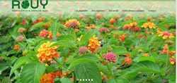 Création site web avignon
