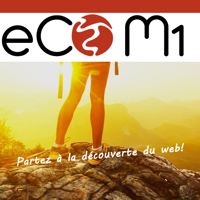 creation site ecommerce internet saint remy provence