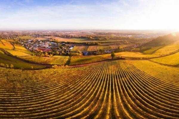 Drone Avignon
