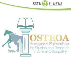 creation-de-logo-ostheopathe-animalier